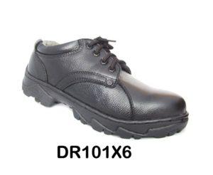DR101X6